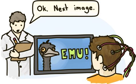 A scientist shows a picture of an emu to a man hooked up to brain monitoring equipment.