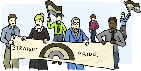 People in traditional and business attire, hold a Straight Pride banner, featuring a brown, beige, and grey rainbow.